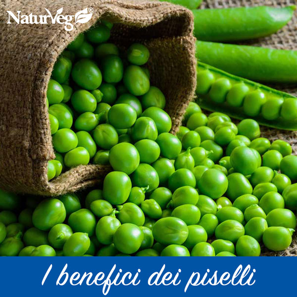 Pea proteins