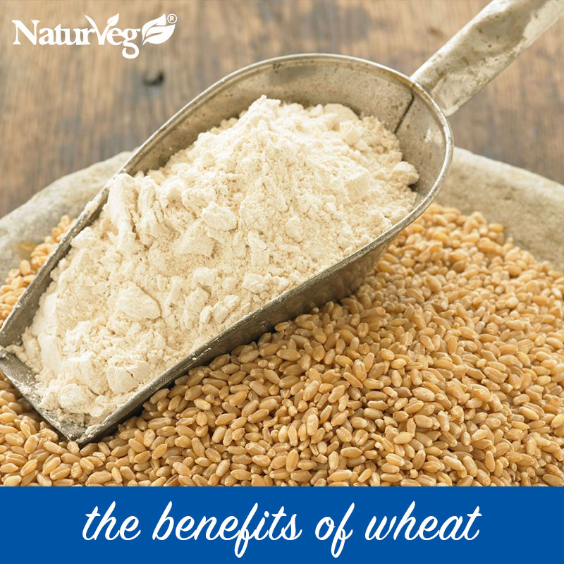 benefits Wheat